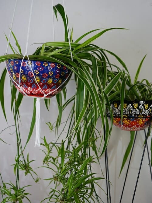 ceramic hand painted hanging pot plant holder large and on stand