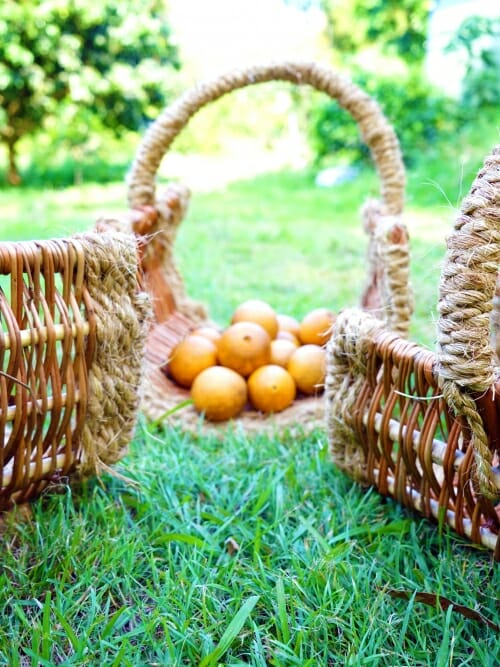 set of three handmade wicker firewood baskets